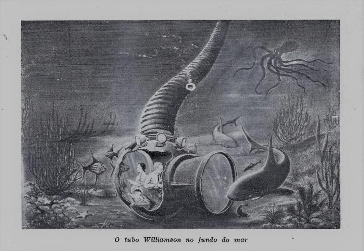 John Williamson - Vinte anos debaixo do mar. Coleta de 7 famílias de peixes e corais para o Field Museum..jpg